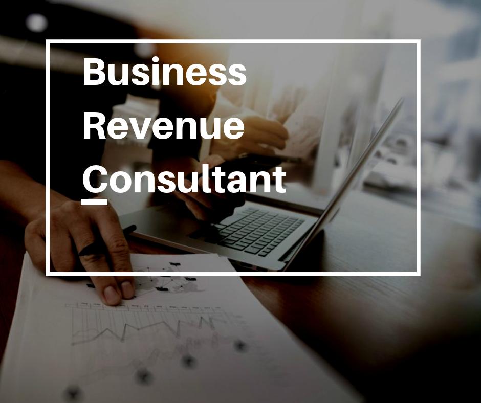 Business Revenue Consultant